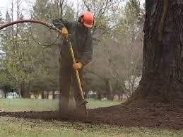 plant health care air spade